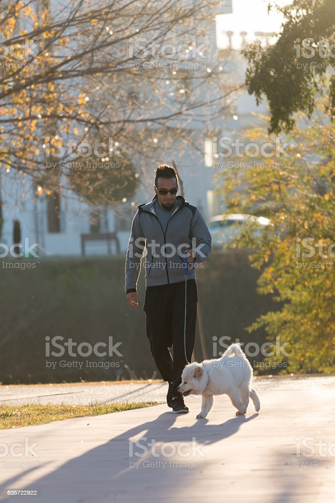 Chow Chow puppy dog and young boy outdoors stock photo