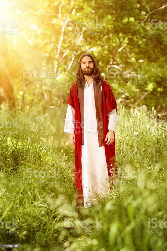 Christ Walking In The Garden Of Eden stock photo