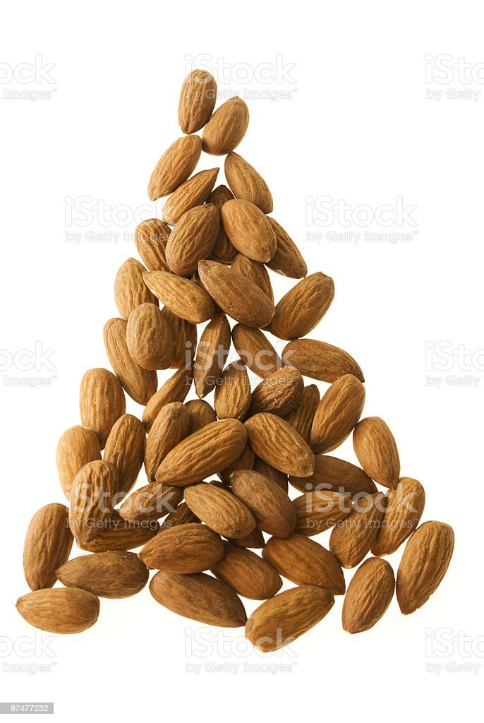 christmas almond tree stock photo