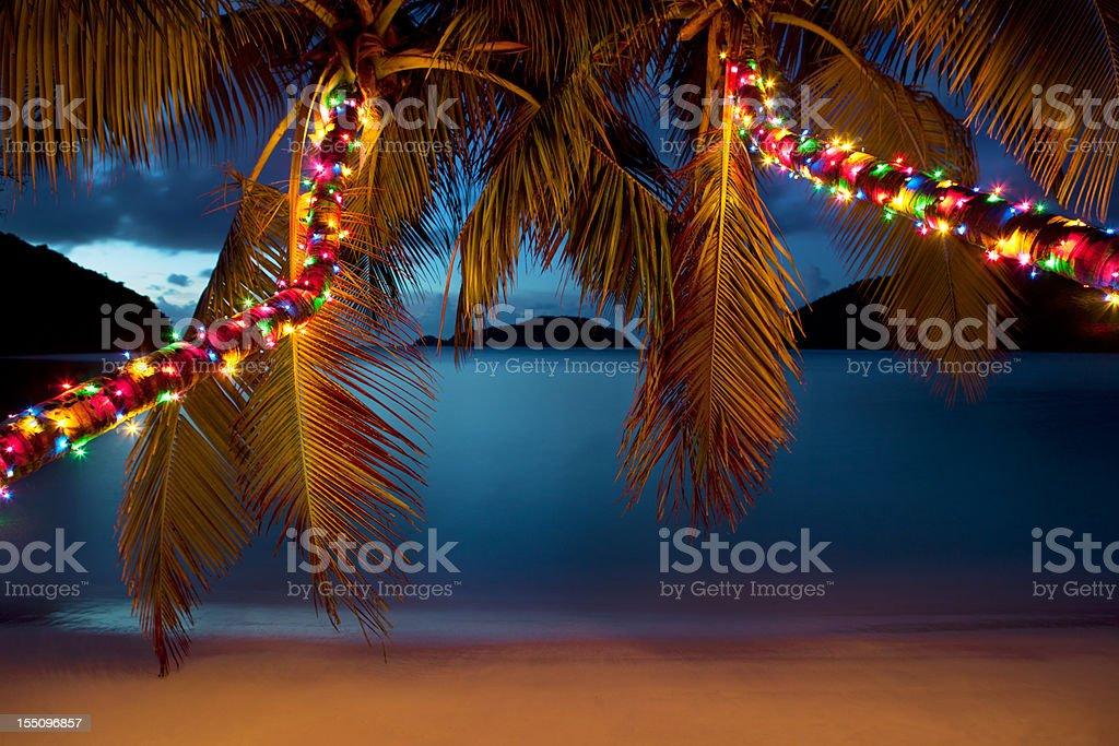 Christmas at the Caribbean beach stock photo
