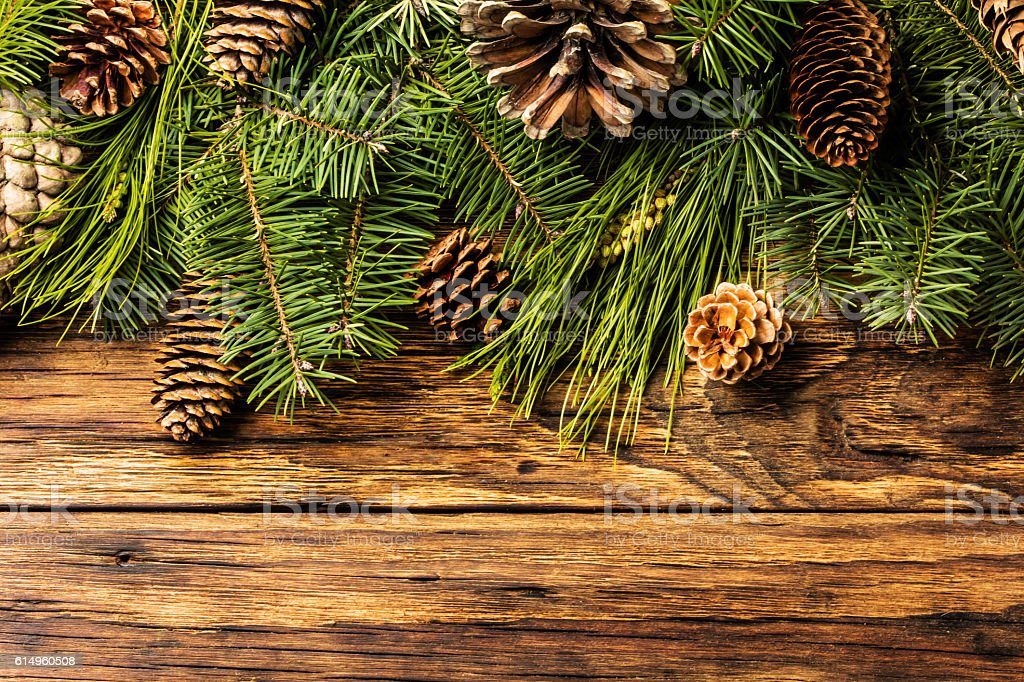 Christmas background. Fir tree branches and cones on wood stock photo