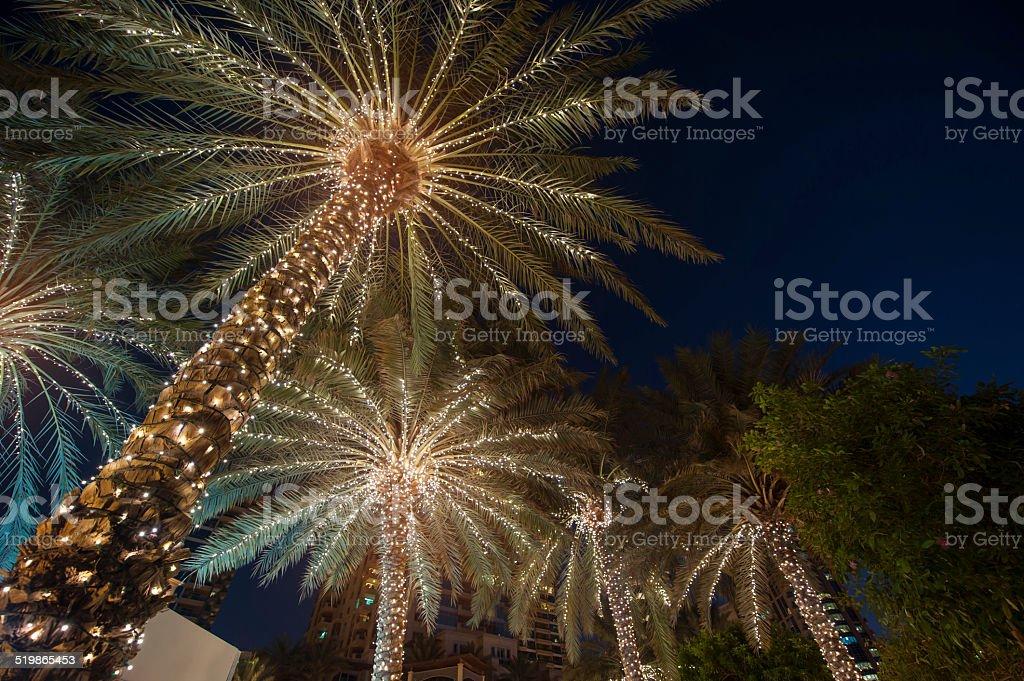christmas background palm tree stock photo