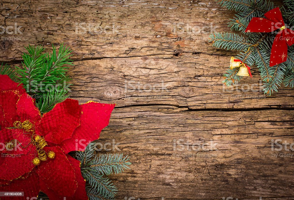 Christmas background with Christmas flower and fir stock photo