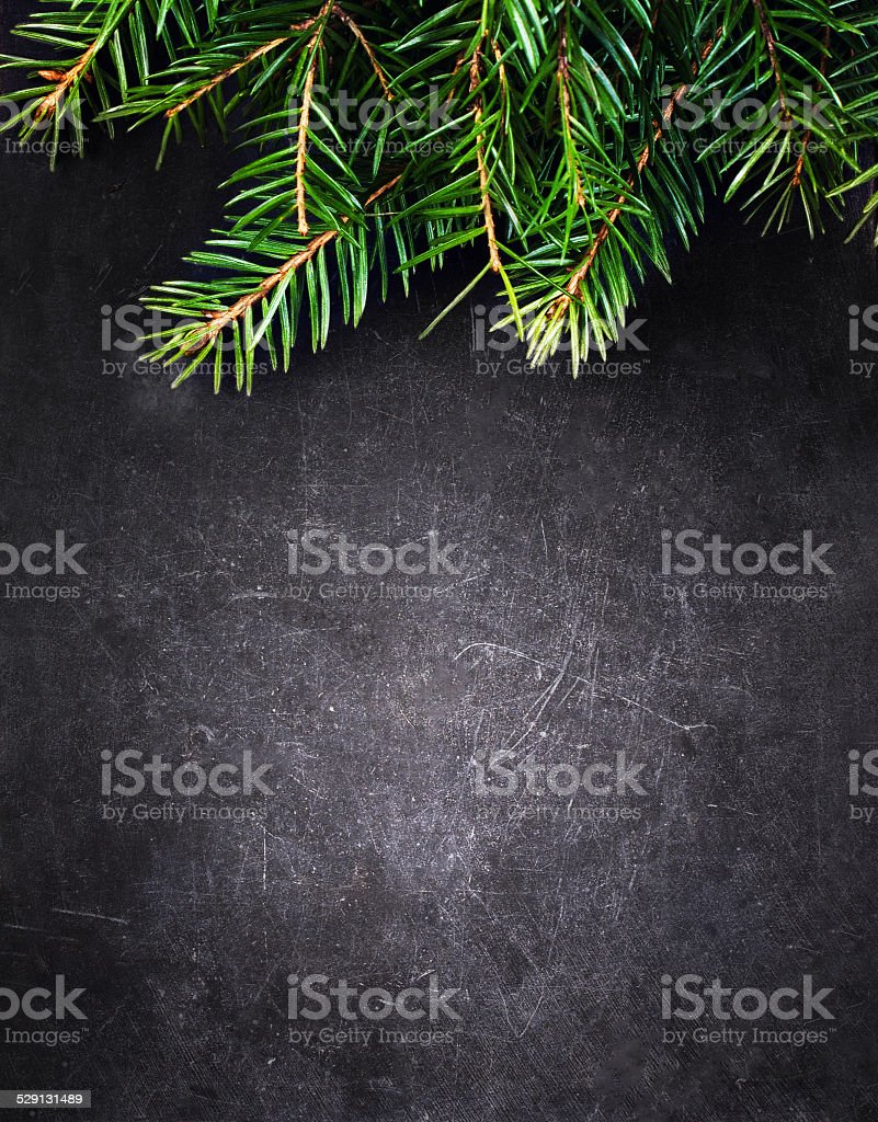 Christmas Background with  Fir Tree on Vintage Black stock photo