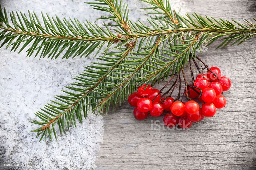 Christmas background with Fir-Tree  on snow stock photo