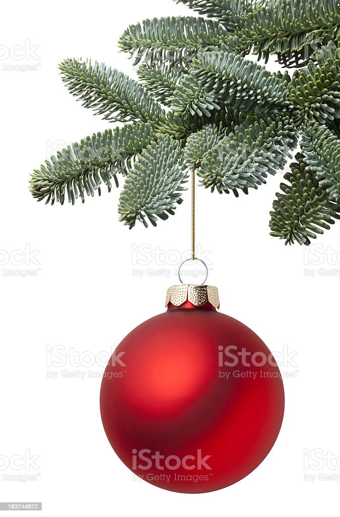 Christmas ball hanging on a fir tree branch stock photo