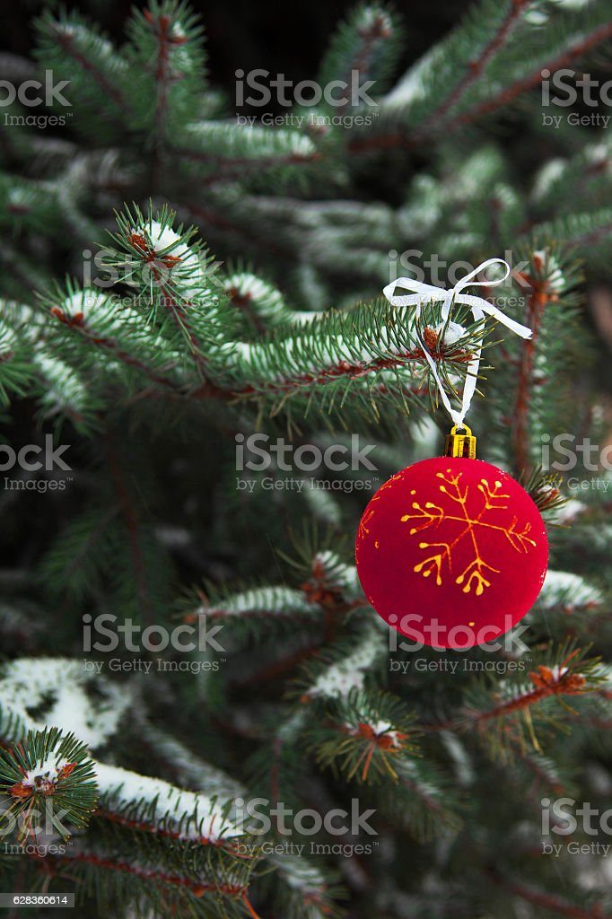 Christmas ball on the branch of  tree royalty-free stock photo