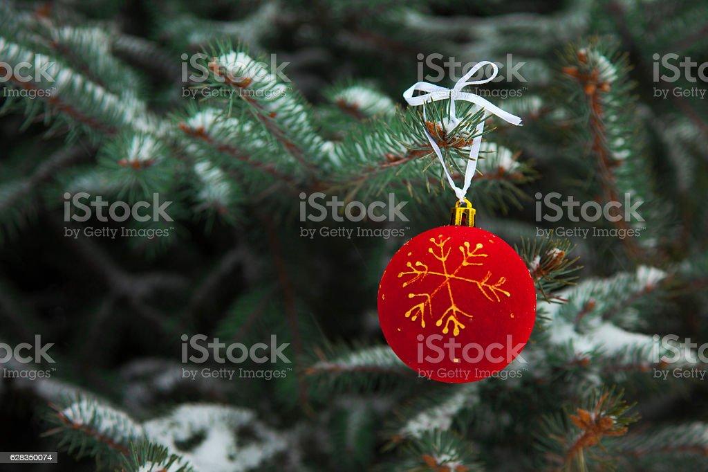 Christmas Balls on branch royalty-free stock photo