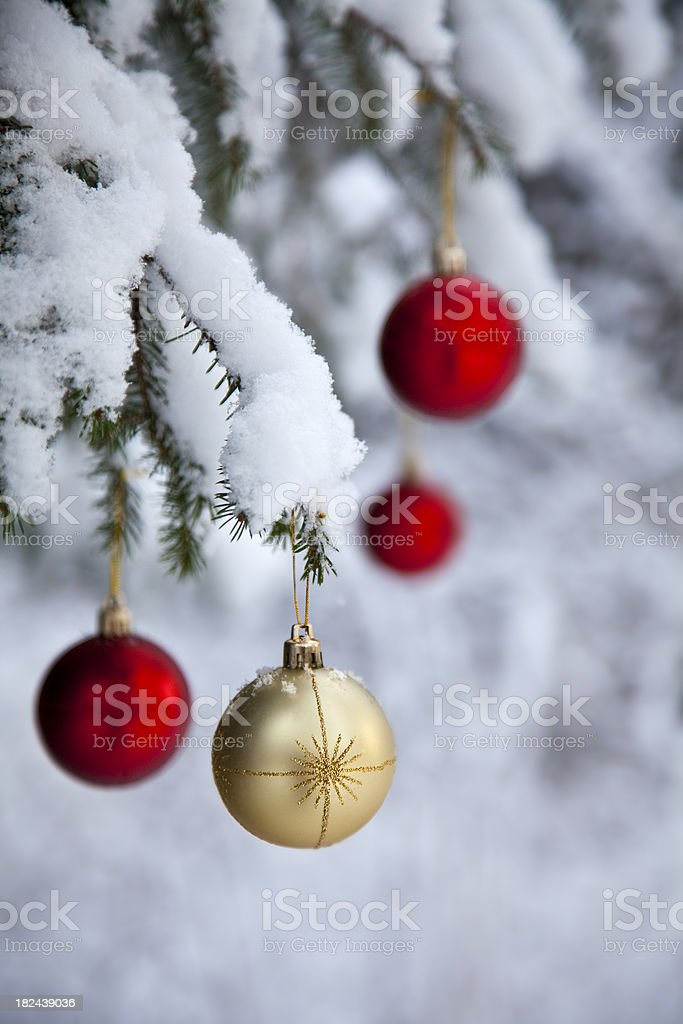 Christmas baubles hanging from snowy fir tree royalty-free stock photo