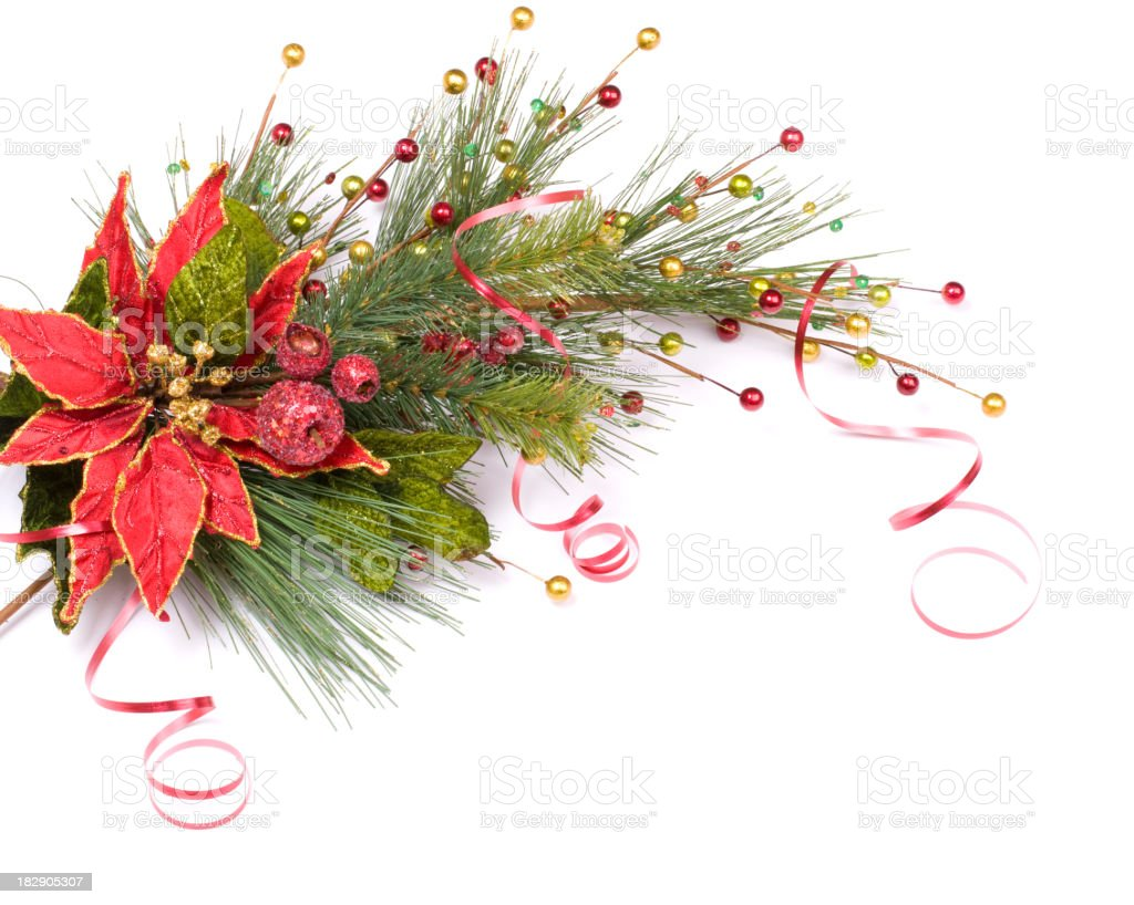 Christmas Border Pine Arrangement royalty-free stock photo