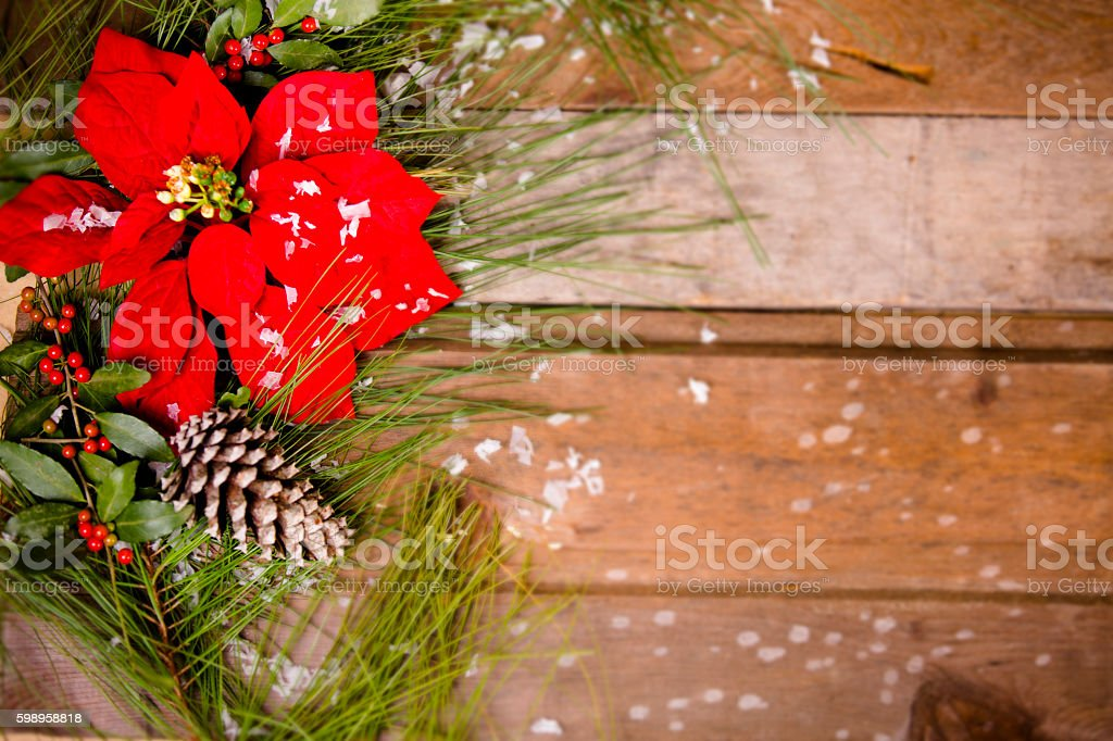 Christmas border with pine tree branch and poinsettia. stock photo