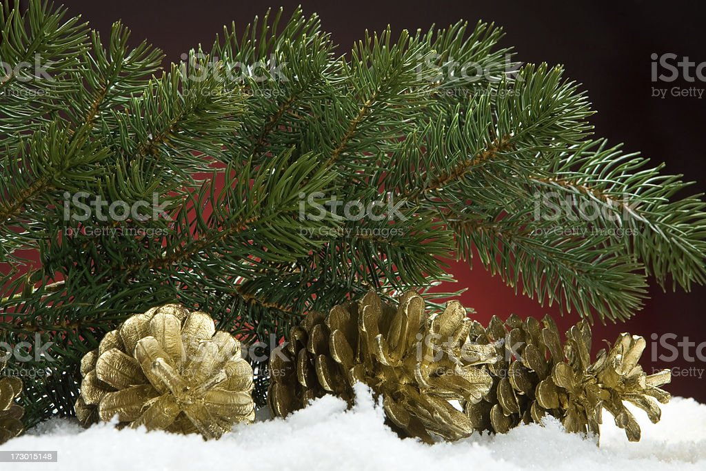 christmas branch royalty-free stock photo