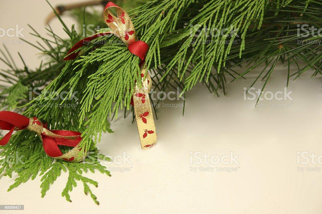 Christmas Branch royalty-free stock photo