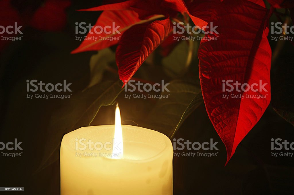 Christmas Candle and Poinsettia stock photo