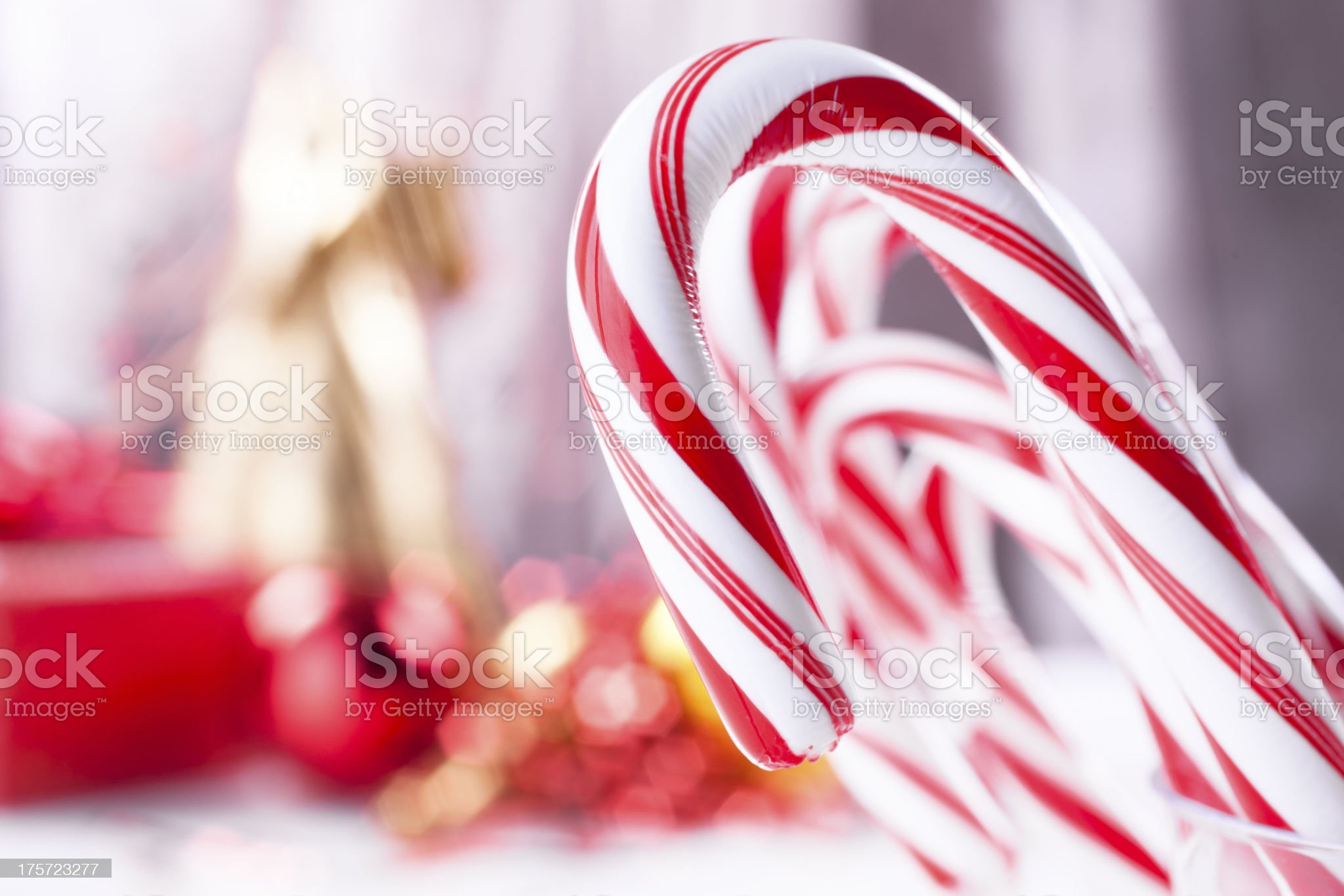 Christmas: Candy canes in a row. Shallow depth of field. royalty-free stock photo