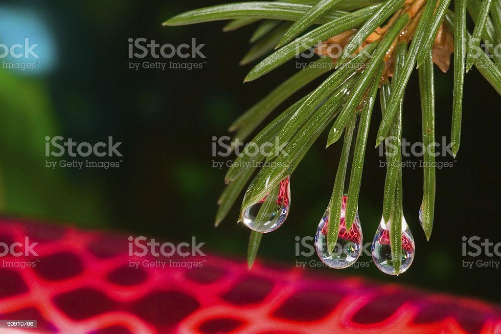 Christmas close-up royalty-free stock photo