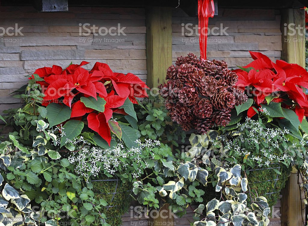 Christmas Cottage royalty-free stock photo