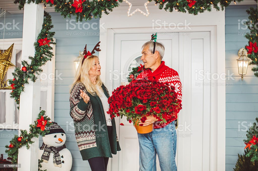 Christmas decorating. stock photo