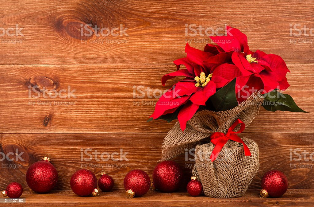 Christmas decoration - artificial red poincettia flower with red balls. stock photo