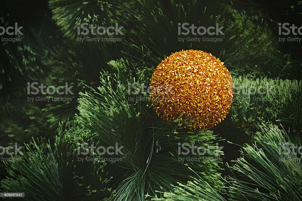 Christmas decoration - Closeup of golden ball hanging in tree stock photo