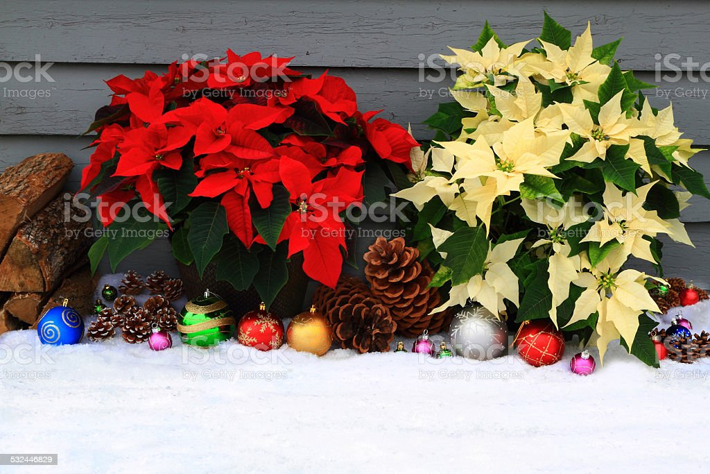 Christmas, (New Year) Decoration stock photo