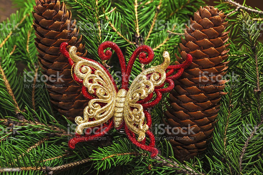 Christmas decoration with red-golden butterfly and pine branches royalty-free stock photo