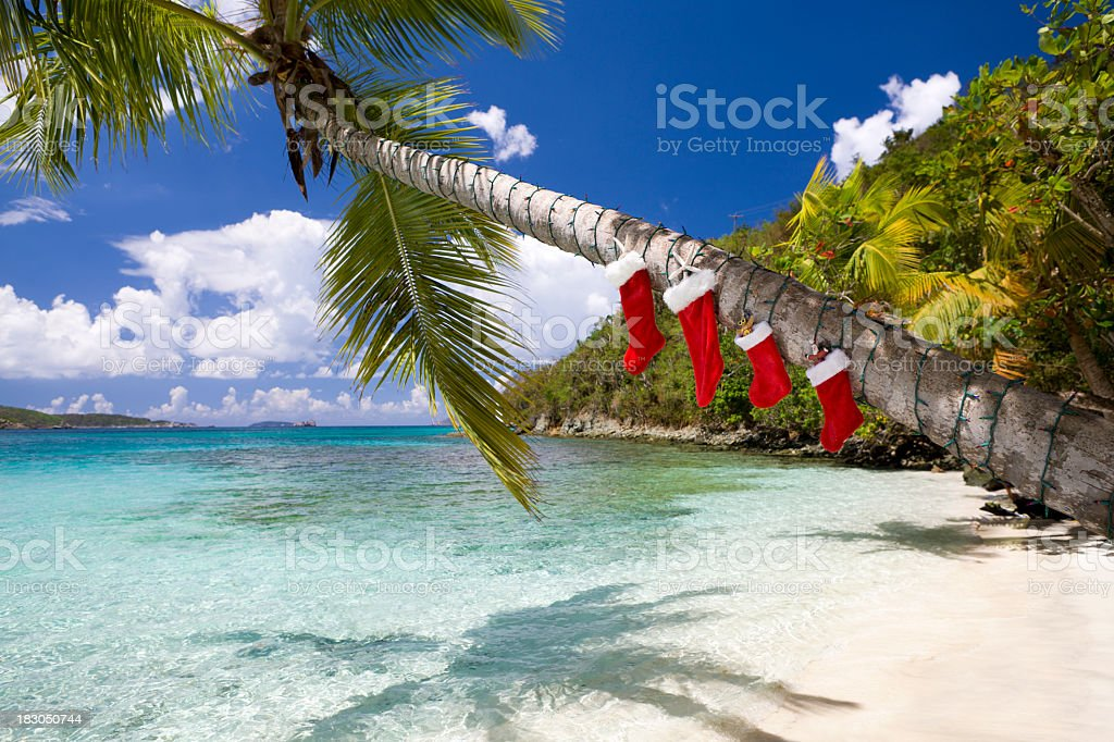 Christmas decorations on a palm tree at the Caribbean beach stock photo