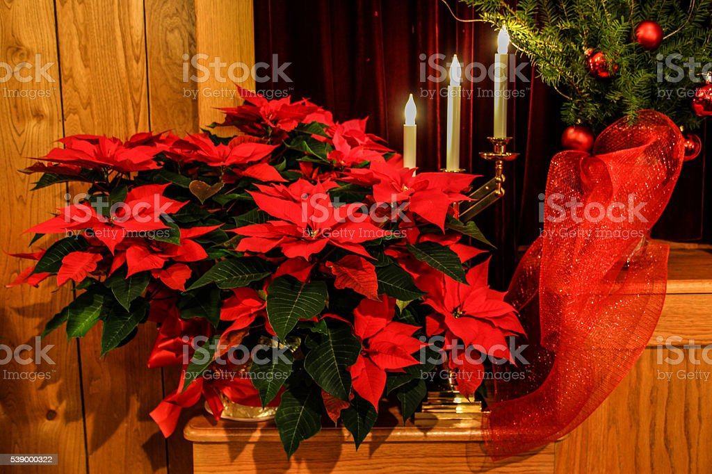 Christmas Decorations stock photo