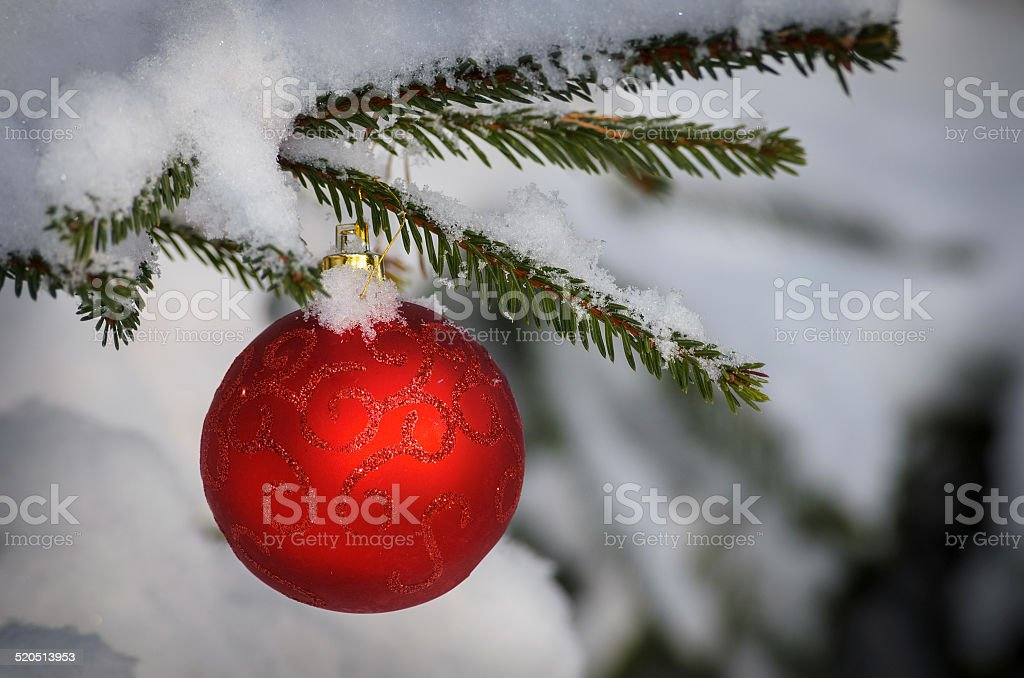 christmas decorative ball on green branch stock photo