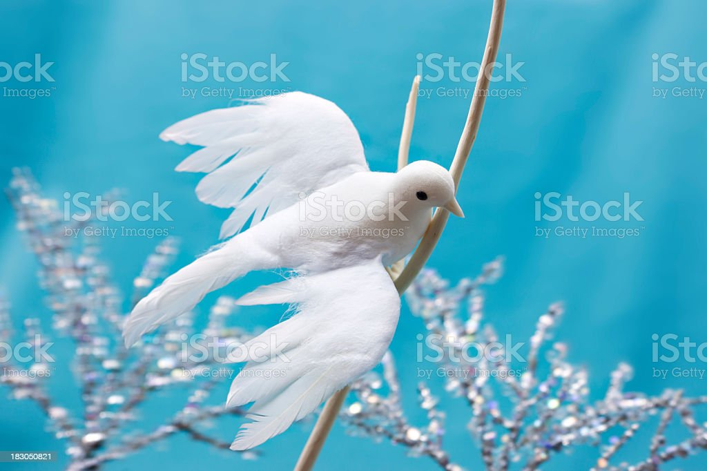Christmas dove : peace on Earth royalty-free stock photo