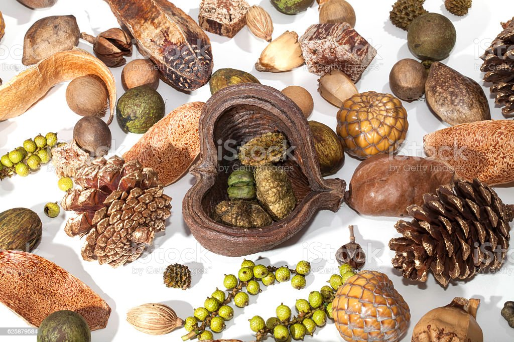 Christmas festival background image of a traditional potpourri s stock photo