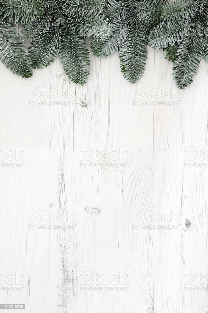 Christmas Fir and Snow Background stock photo