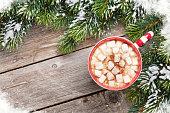 Christmas fir tree and hot chocolate