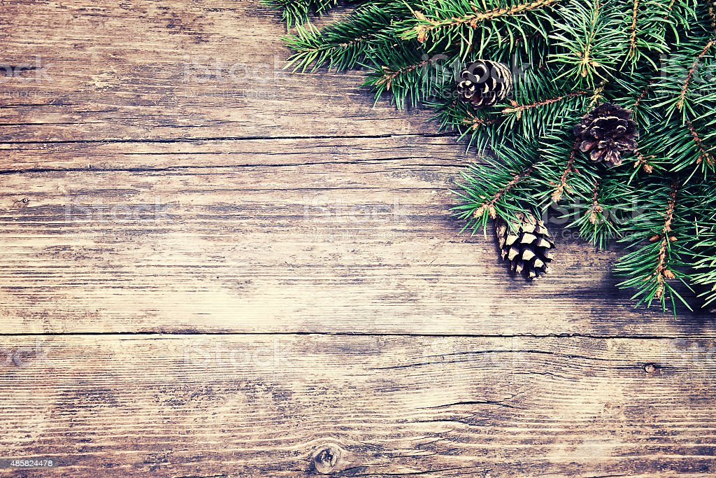 Christmas fir tree on a wooden background stock photo