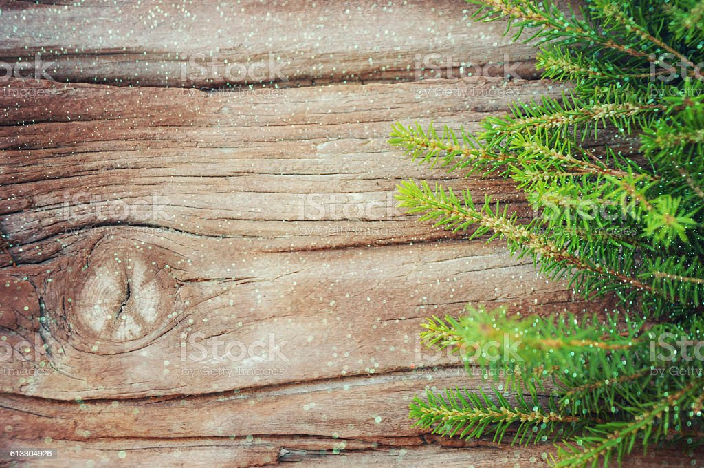 Christmas fir tree on the wooden board stock photo