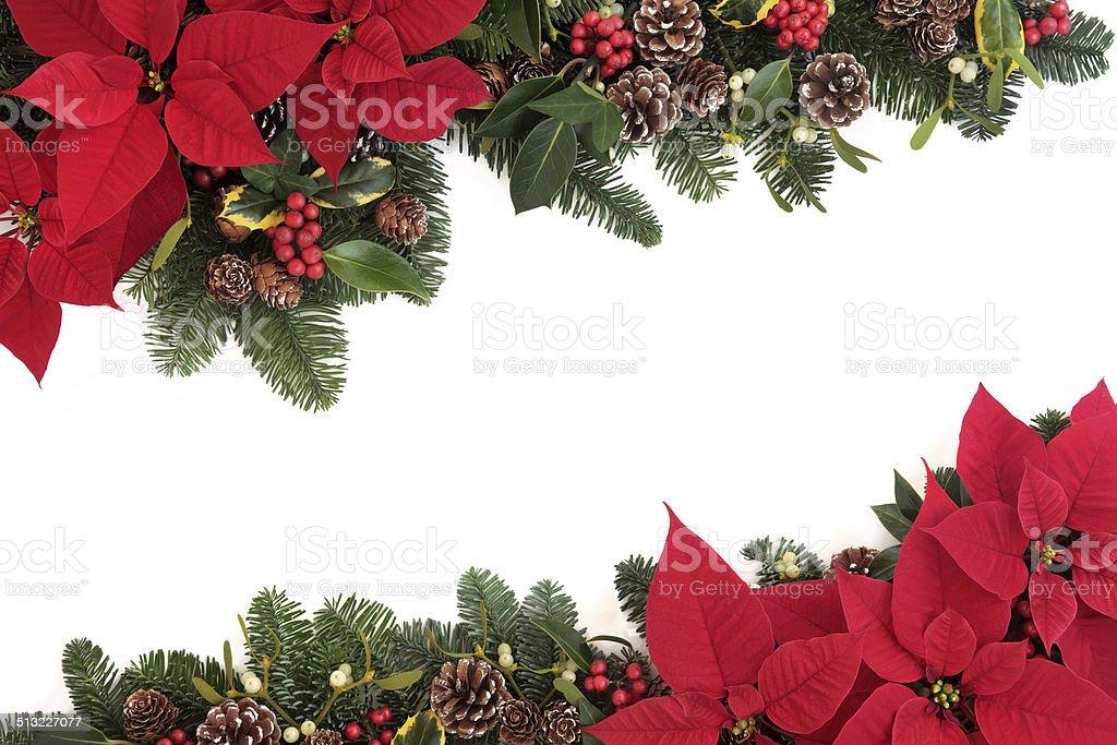 Christmas Floral Border stock photo