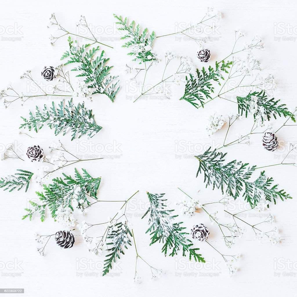 Christmas frame made of pine cones, thuja branches, gypsophila flowers stock photo