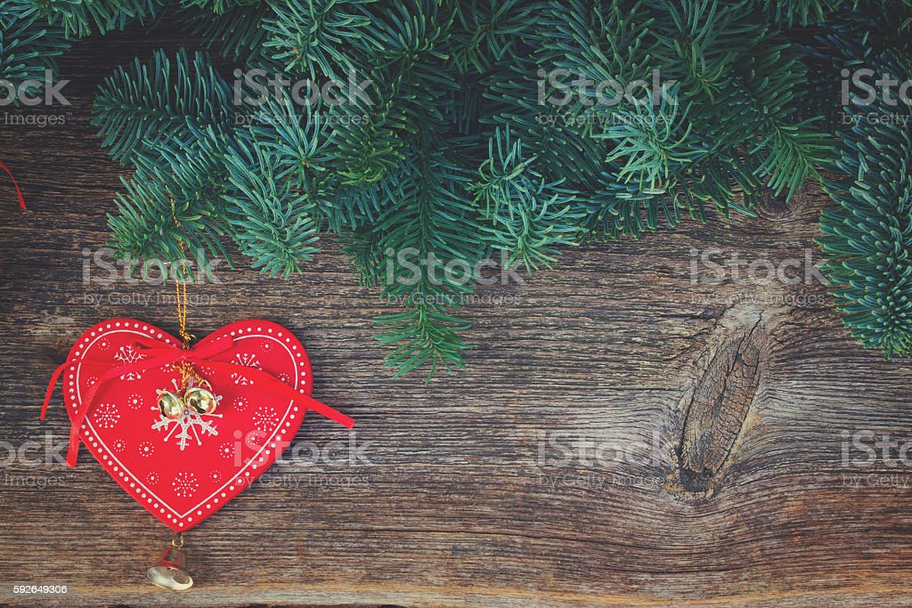 christmas fresh evergreen tree branches stock photo