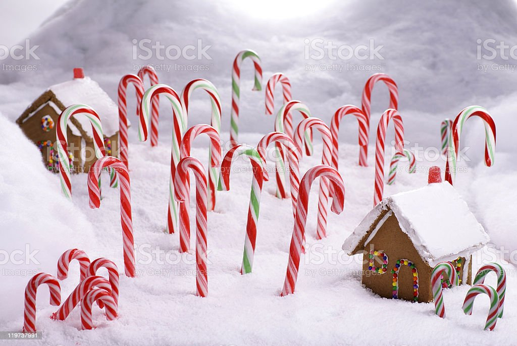 Christmas Ginger Bread Cottages in Candy Cane Forest stock photo