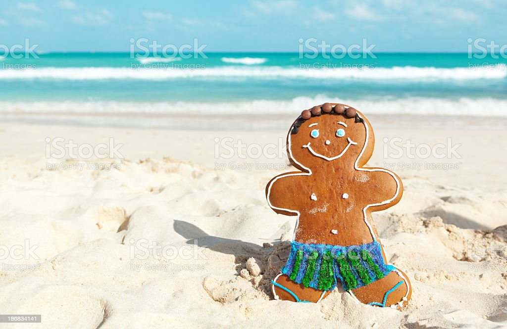 Christmas Ginger Bread Man Winter Vacation on Caribbean Beach royalty-free stock photo