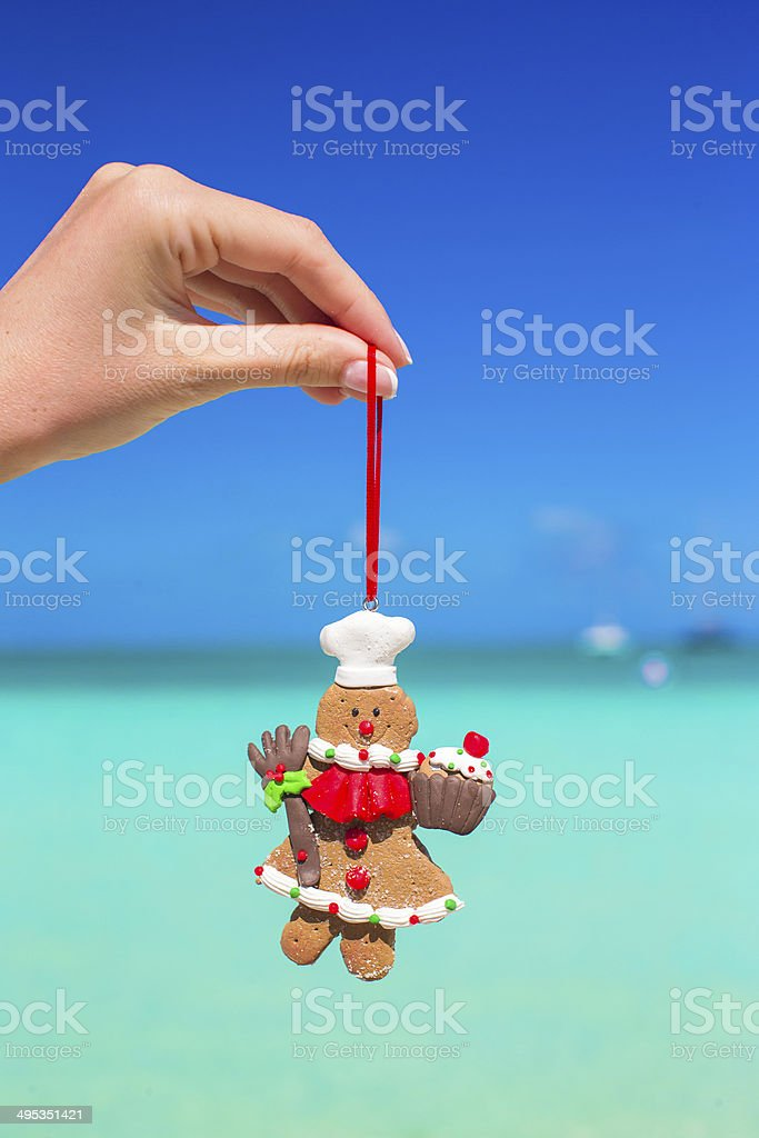 Christmas gingerbread cookie in hand against the turquoise sea stock photo