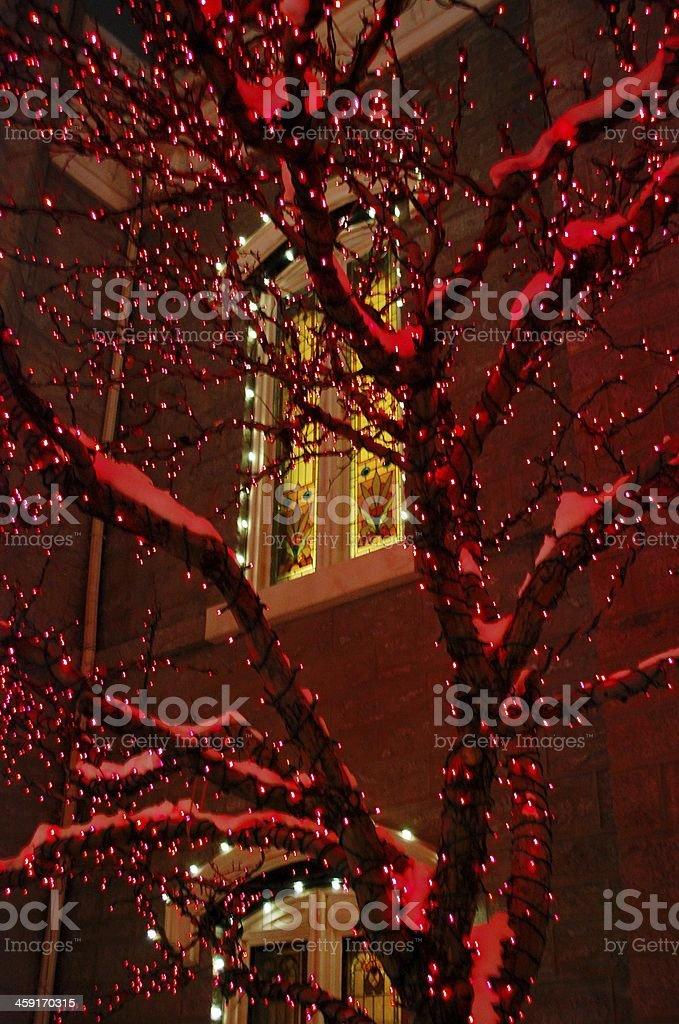 Christmas Glow royalty-free stock photo