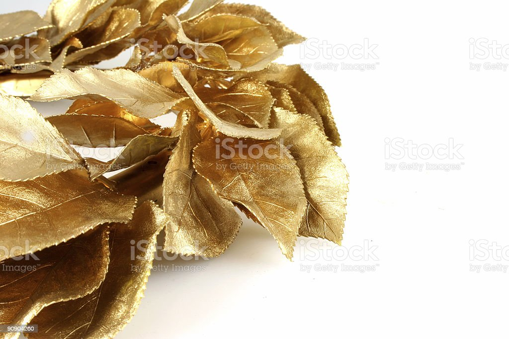 Christmas Gold Leaves With Copy Space stock photo