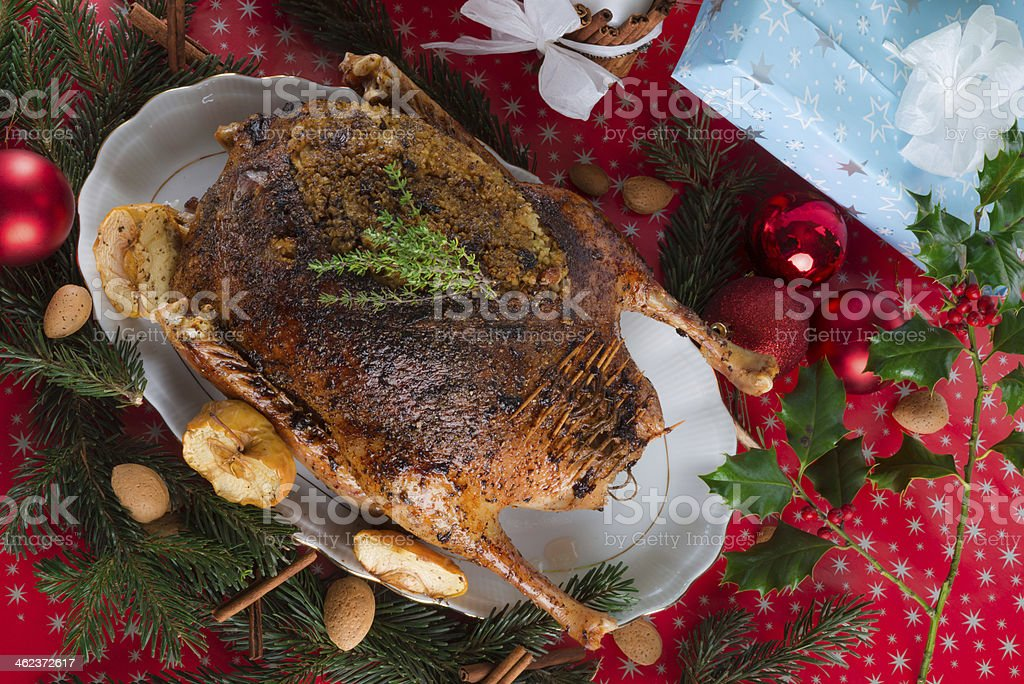 Christmas goose stock photo