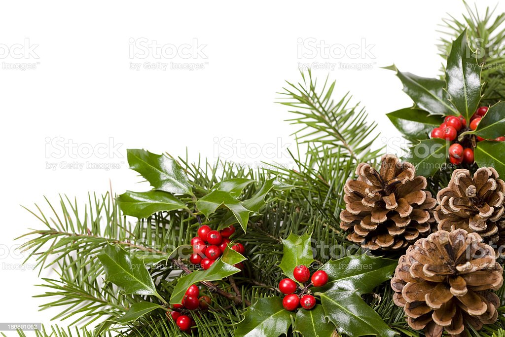 Christmas greenery stock photo
