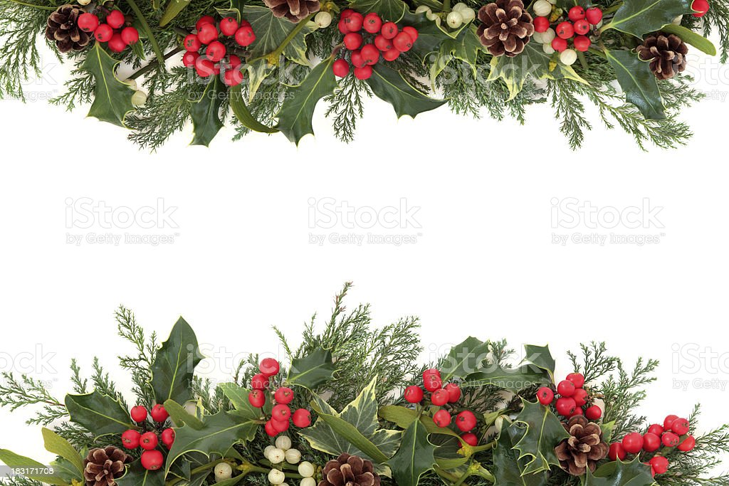 Christmas Holly border covered at top and bottom stock photo