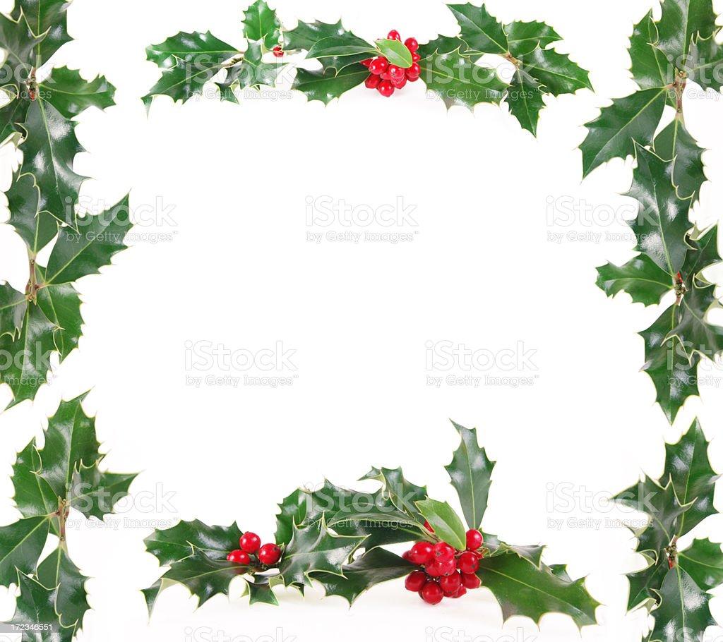 Christmas holly border XXL stock photo