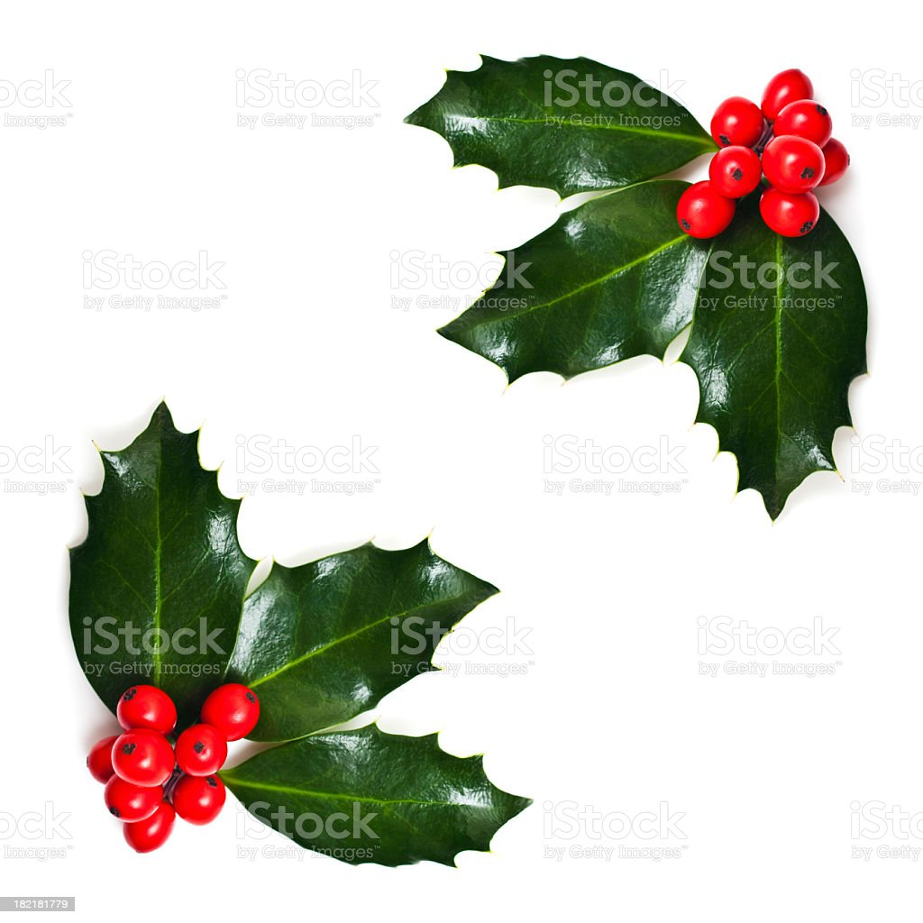 Christmas Holly Corners stock photo
