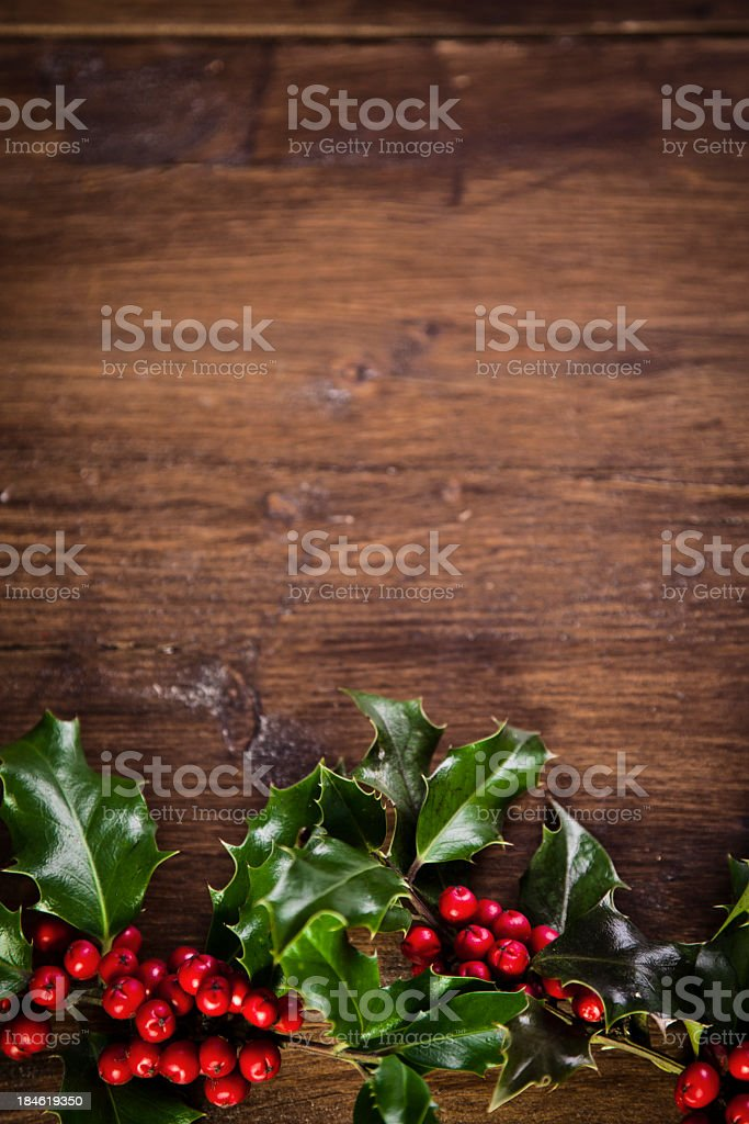 Christmas Holly Decoration stock photo