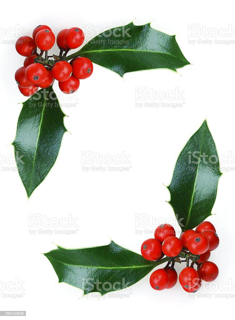 Christmas Holly Frame royalty-free stock photo
